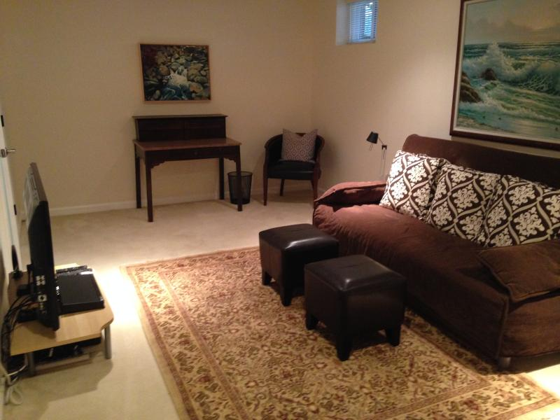 Spacious basement family room, or 4th bedroom with very comfortable Queen sofa bed and full bath.