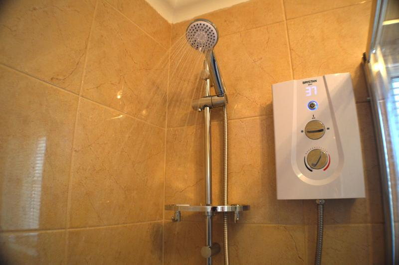 Electric shower with realtime digital temperature display