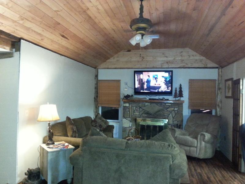 Living room with working fireplace and 52' flat screen tv with blue ray player