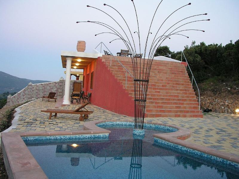 Pool mosaic decorated Shallow part 40cm  pool (10X3.5m) with hydro-massage and open air shower