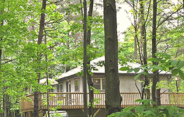 Our cottage is located on 22 acres of a private, heavily wooded ridge.