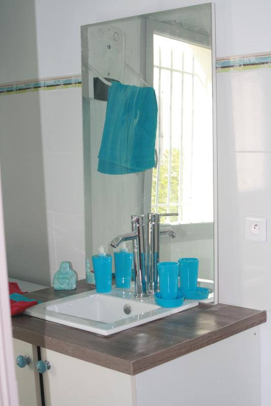 Salle de bain spacieuse et lumineuse douche wc machine à laver