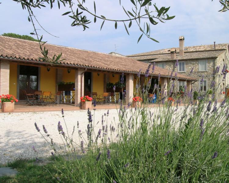 App. monolocale,con vista lago e spiaggia privata, alquiler vacacional en Bolsena