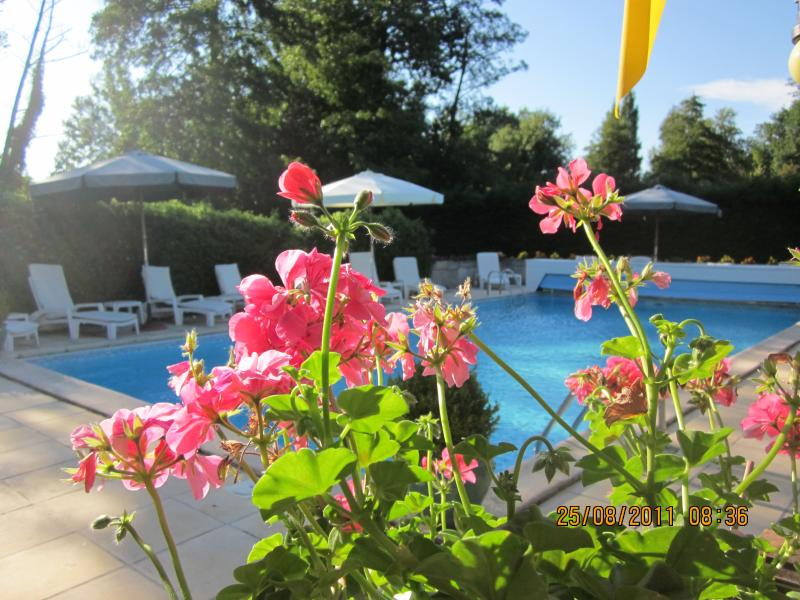 le clos du petit moulin, holiday rental in Gironde