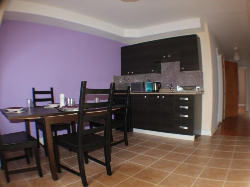 1 bedroom apartment, holiday rental in La Prairie