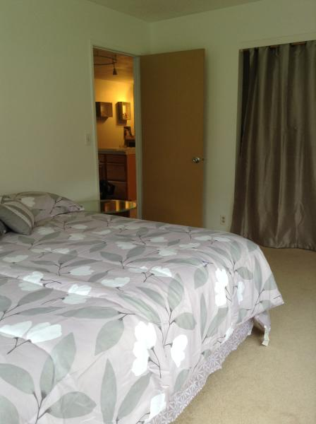 master bedroom with kal king bed