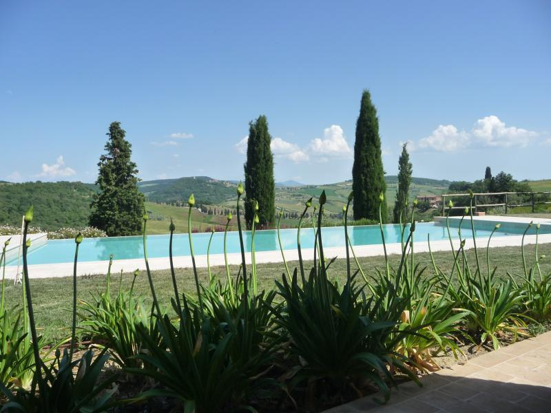 View from the infinity pool over the Val d'Orcia