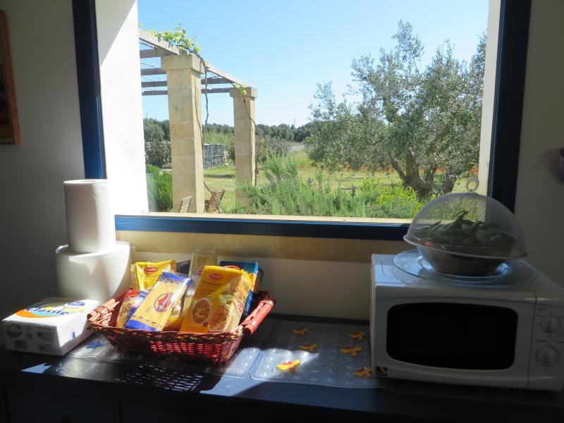 Da cozinha para na pérgola...... no final da manhã