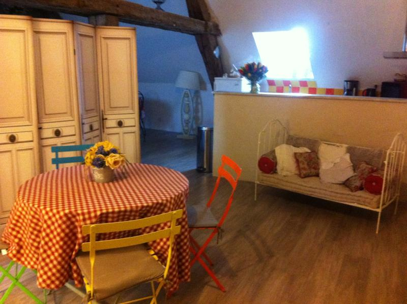AU COEUR DES CHATEAUX, holiday rental in Beaugency