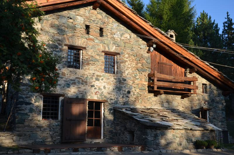 Chalet in the wood Sauze d'Oulx, holiday rental in Plan