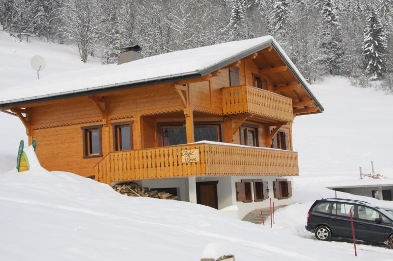 16p luxury chalet opposite skislope in Chatel (Fr), location de vacances à Chatel