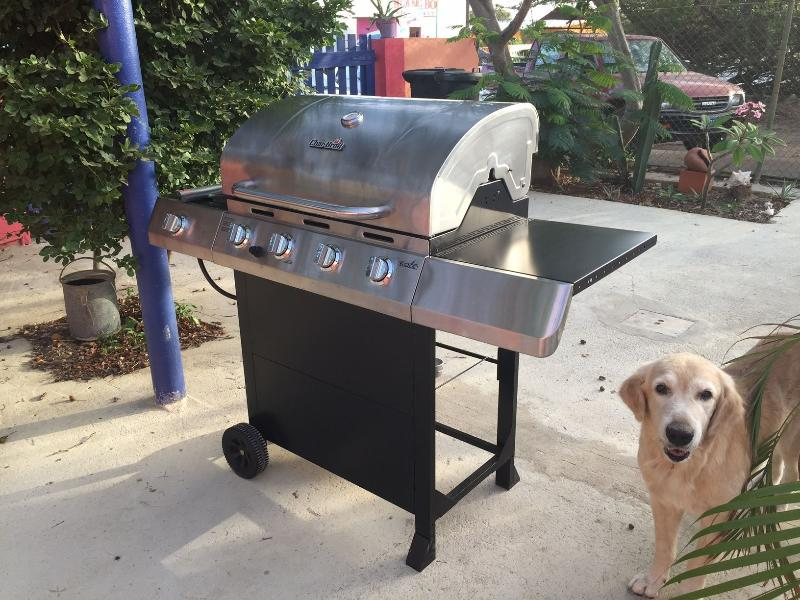Feel free to use the BBQ, Bring your own meat and start right away....