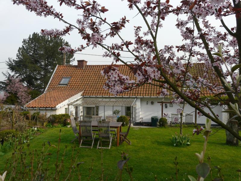 La Quitapenas, holiday rental in Kluisbergen-Ruien