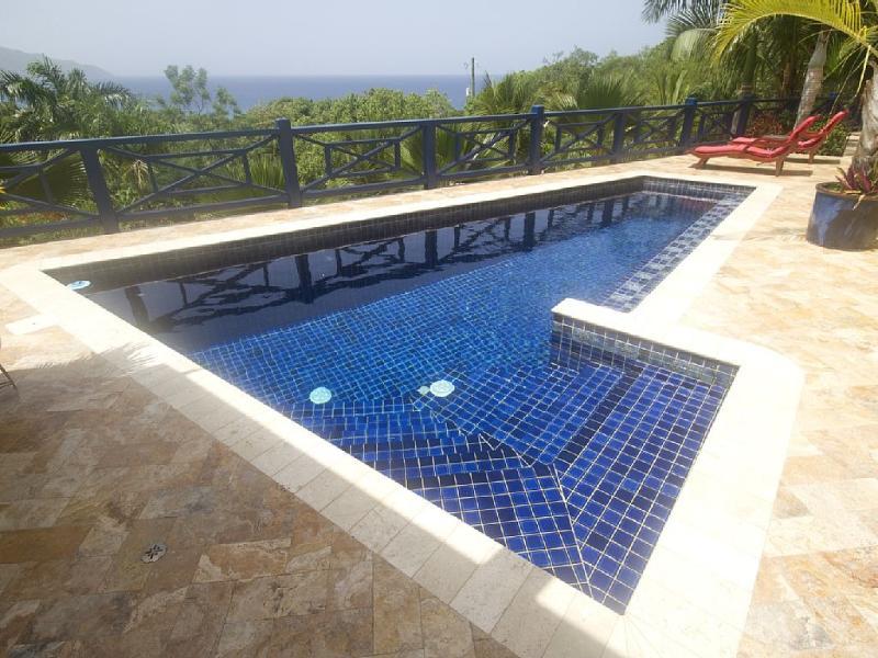 Maravillosamente baldosa piscina con pasos
