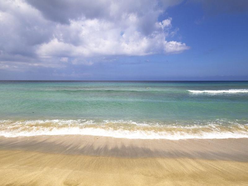 Snorkel, bucear y nadar en la playa de la bahía de caña