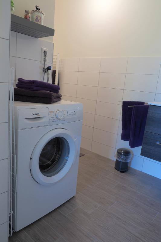 una lavadora para la gente que estancia allí y ya es un secador mixto en el garaje