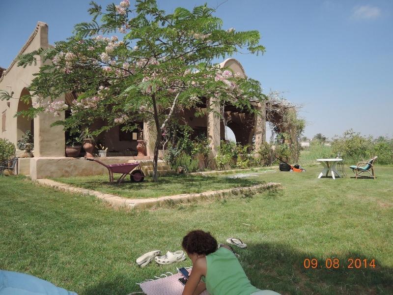 Guest house du lac Qarun: Chez Emma, location de vacances à Ibshaway
