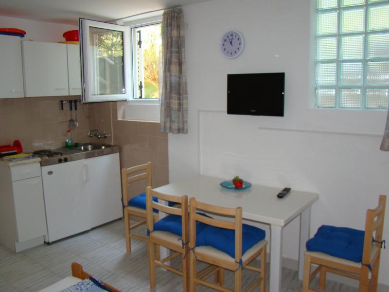 Studio apartment near the sand beach, holiday rental in Zdrelac