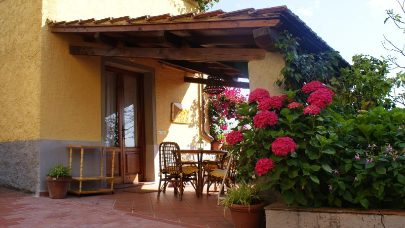Country house in beautiful olive grove in Tuscany, location de vacances à Santa Lucia