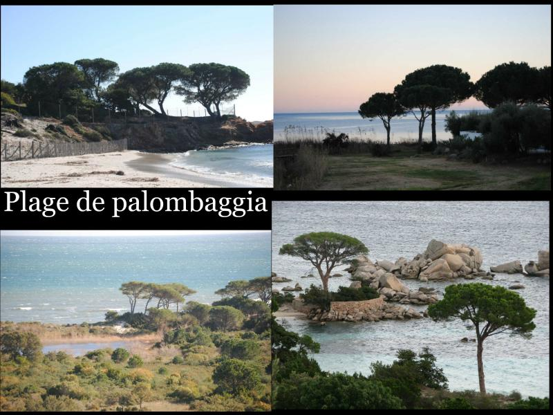 Palombaggia