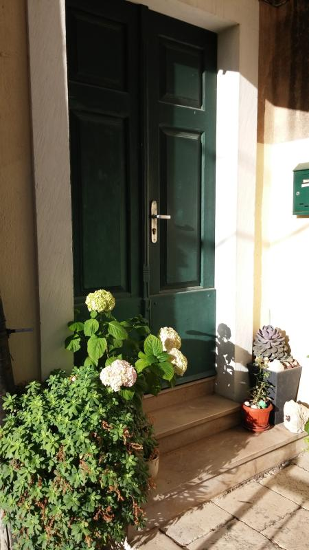 Old wodden - typical Dalmation door