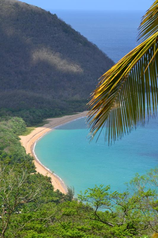 The cottage is next to the beach of Grande Anse, the biggest of Guadeloupe