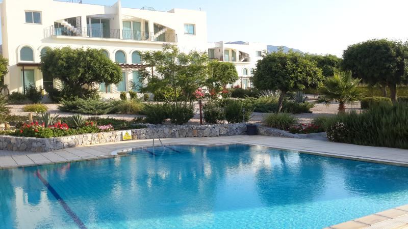 Large communal pool with sunbeds, looking towards front of apartment.
