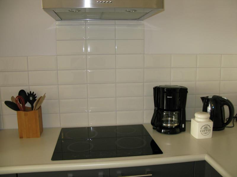 Kitchen with dish washer, fridge, microwave/oven, induction stove.