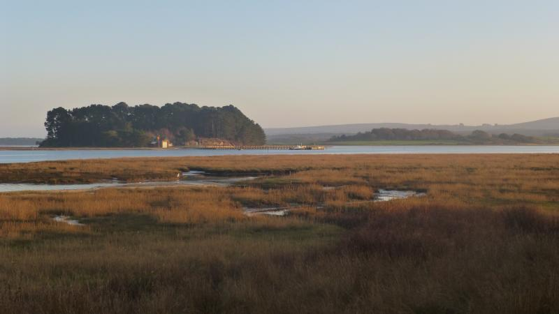 Poole Harbour from the Arne Peninsula.