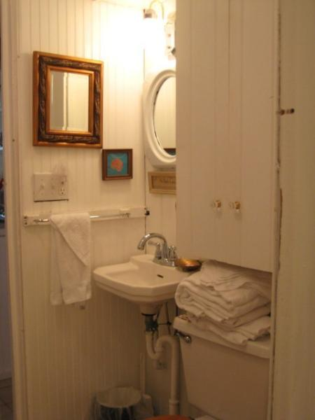 Little bathroom, centrally located in the cabin.  Handrail to tub/shower.