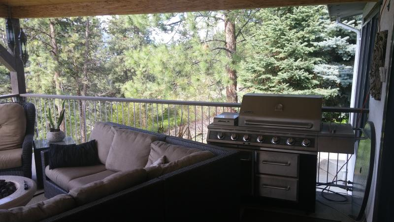 Create meals on the outdoor barbecue