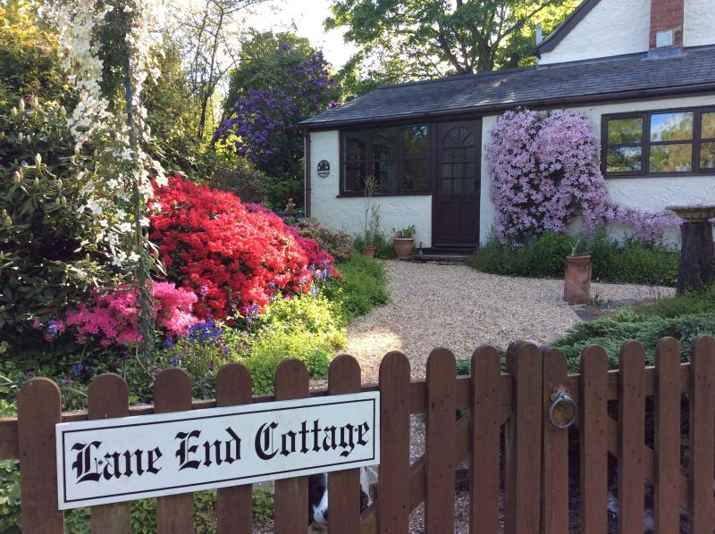 A mass of flowers greet you on arrival at the cottage.