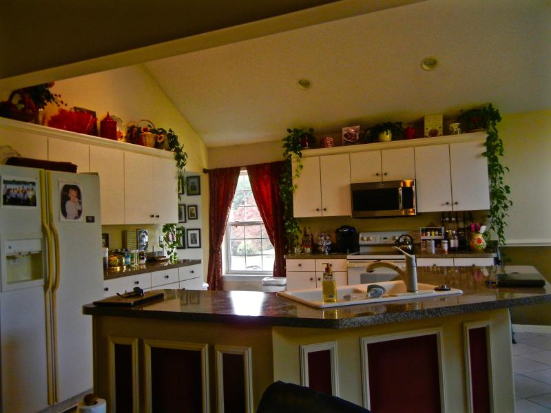 This kitchen is fully equipped for preparing and serving meals, if you choose to.