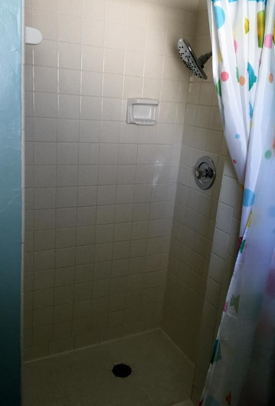 Tiled shower with deluxe shower head. As per shower head mfr.,'enjoy the ultimate shower experience'