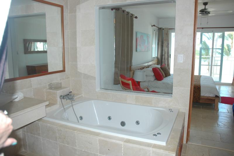 Bathroom adjacent to Master Suite, fully equipped including a 'jacuzzi with a view!'