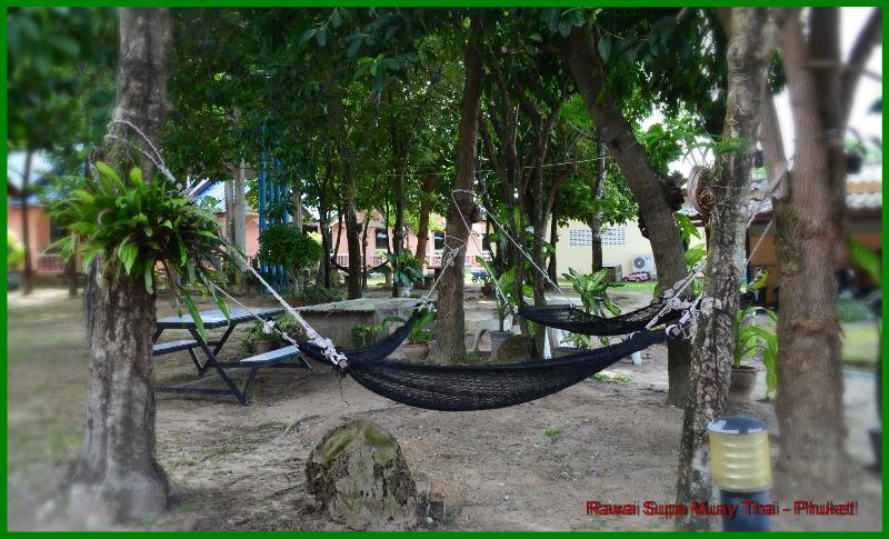 Outdoor garden area with fresh air