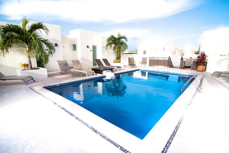 Common Rooftop Pool With Loungers For 10 People