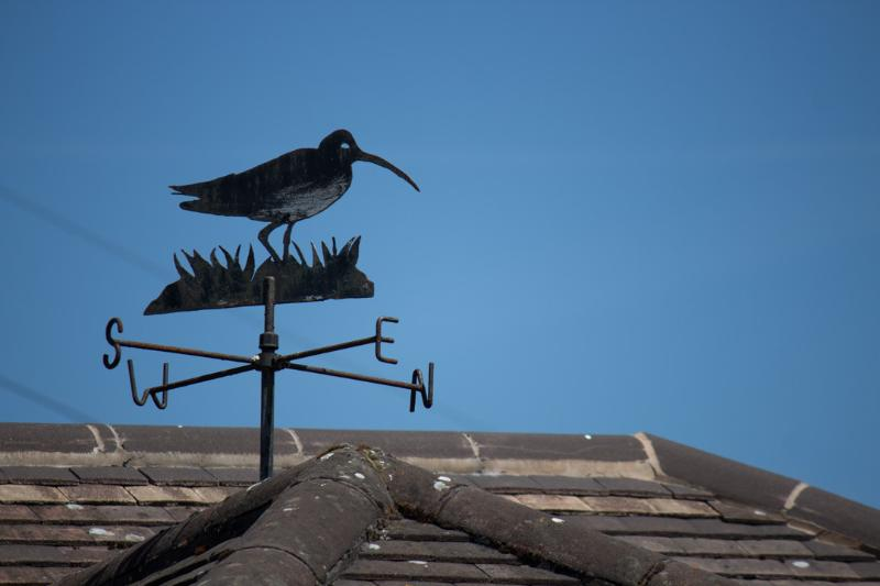 Curlew Cottage Roof