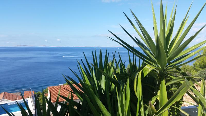 Sommer, Sonne, Palme, Meer