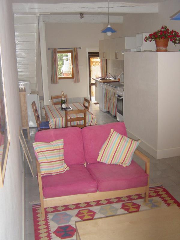 Luminose e ariose, open space cucina/soggiorno/sala da pranzo camera con tutti i comfort moderni