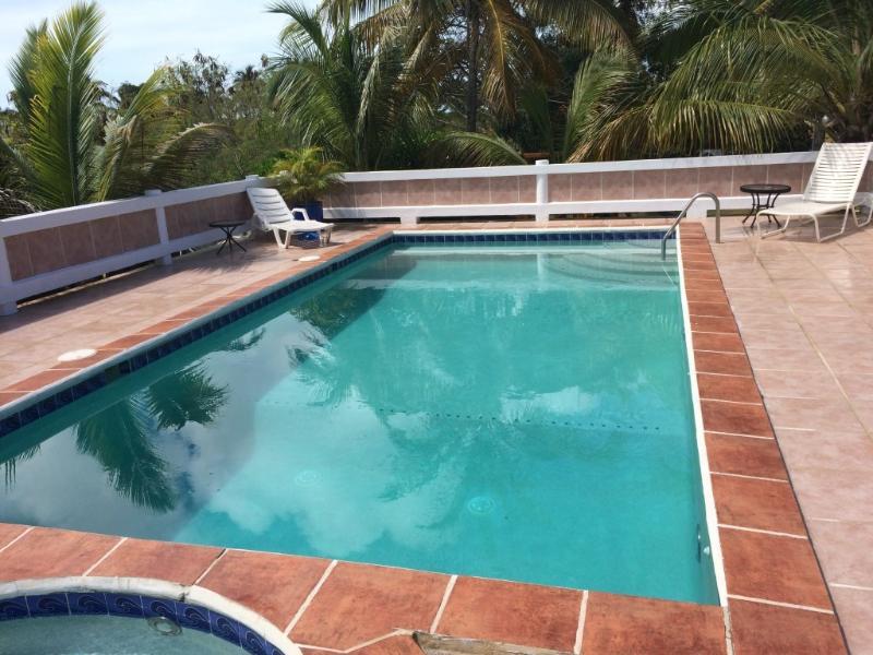 Pool & Hot Tub at Le Castellet: Provo Villa