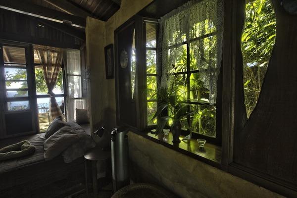 Original tree shape windows