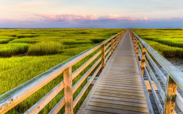Bass Hole Boardwalk, a four minute drive (or ten minute bike ride). Photo by Chris McGuire
