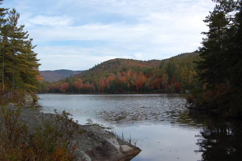 beautiful perch pond in the fall