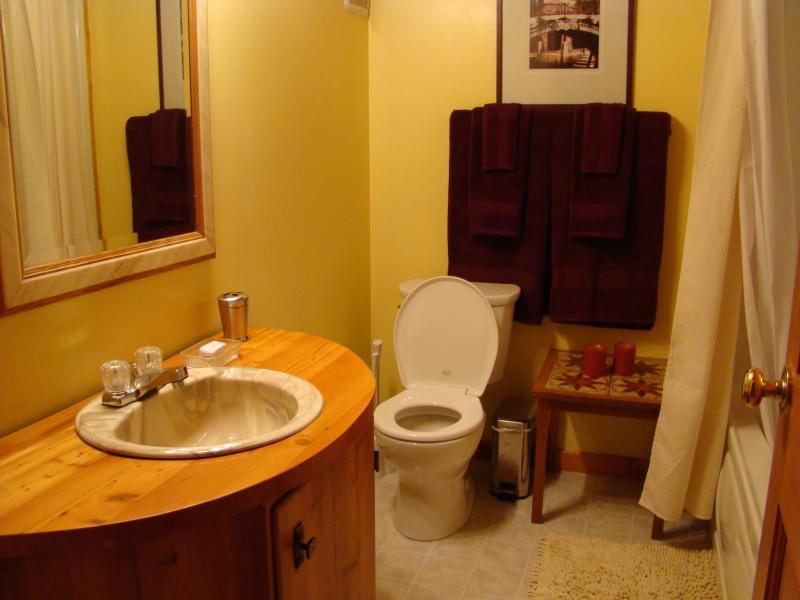 Begane grond badkamer met wastafel, toilet, bad / douche en veel zachte handdoeken