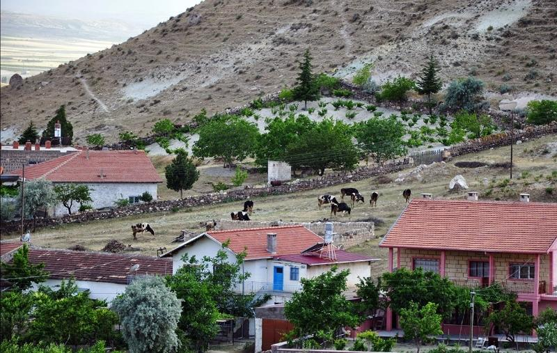 REAL VİLLAGE HOUSE, vacation rental in Cappadocia