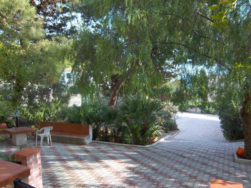 Il bel giardino ricco di piante mediterranee ed un piccolo orto con aromi di cucina.