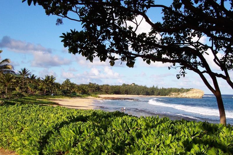 Playa de 350yards a distancia por un sendero de jardín