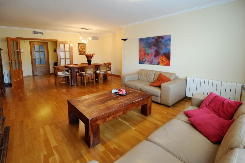 Spacious apt.with views of Science museum Valencia, vacation rental in Valencia
