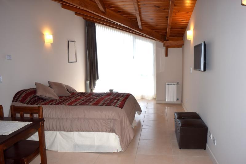 General view of the Studio apartment in Bariloche